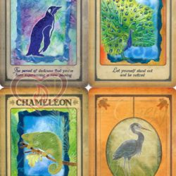 Karte Messages from your Animal Spirit guides 4_logo