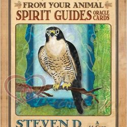 Karte Messages from your Animal Spirit guides 5_logo