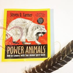 Knjiga Power Animal 1_logo