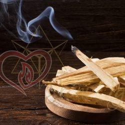 Holy wood or sacred wood - Bursera graveolens